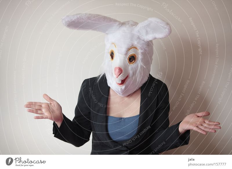 Woman White Joy Animal Funny Easter Carnival Hare & Rabbit & Bunny Carnival costume Costume Easter Bunny Dress up Perplexed