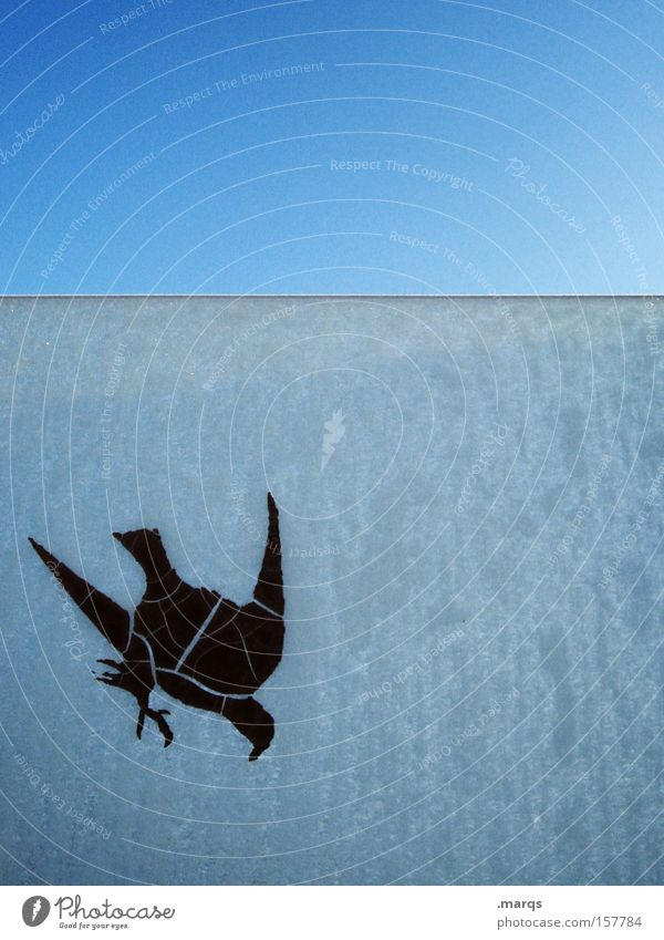 Blue Animal Life Cold Window Ice Bird Flying Exceptional Obscure Frozen Hunting Decline Window pane Label