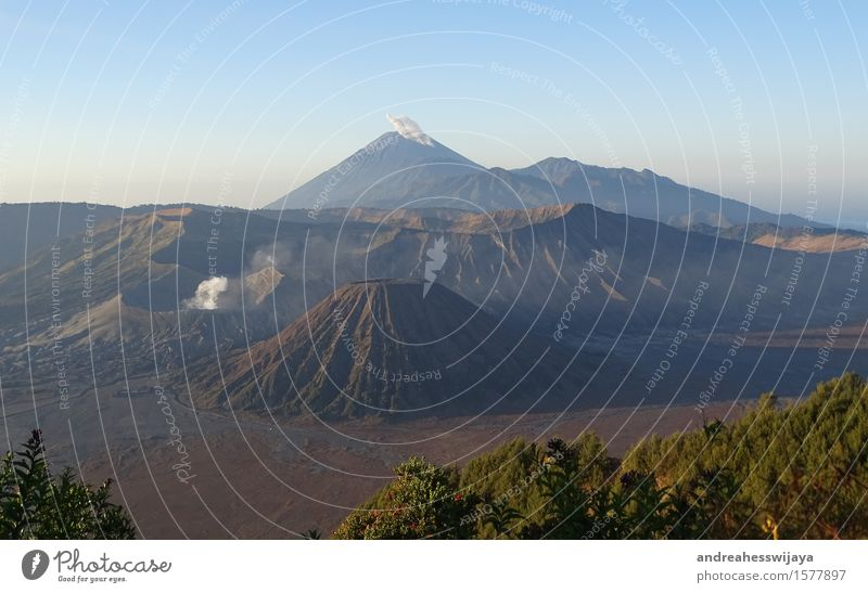 Two active volcanoes in Java, Indonesia Nature Landscape Earth Sand Fire Beautiful weather Mountain Peak Volcano bromo semeru Island Adventure Asia Smoke cloud