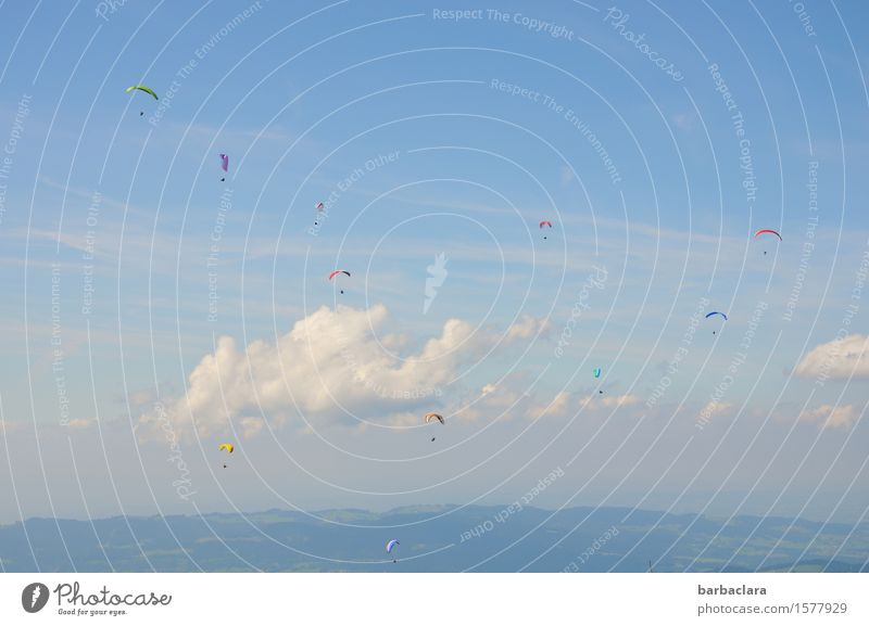 LET HER LIVE HIGH! Sports Paragliding Human being Group Nature Landscape Air Sky Clouds Alps Mountain Flying Blue Moody Joy Joie de vivre (Vitality) Trust