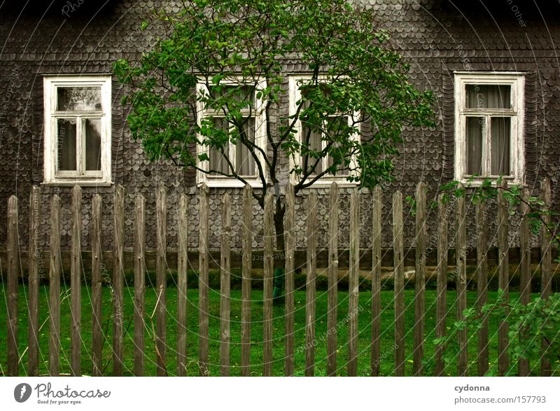 homeland romanticism House (Residential Structure) Window Tree Garden Fence Old fashioned Symmetry Curtain Time Transience Life Green Meadow Home country