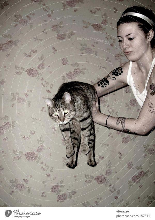 Woman Wall (building) Jump Cat Air Flying Rose Aviation Tattoo Mammal Domestic cat Slippers Footwear
