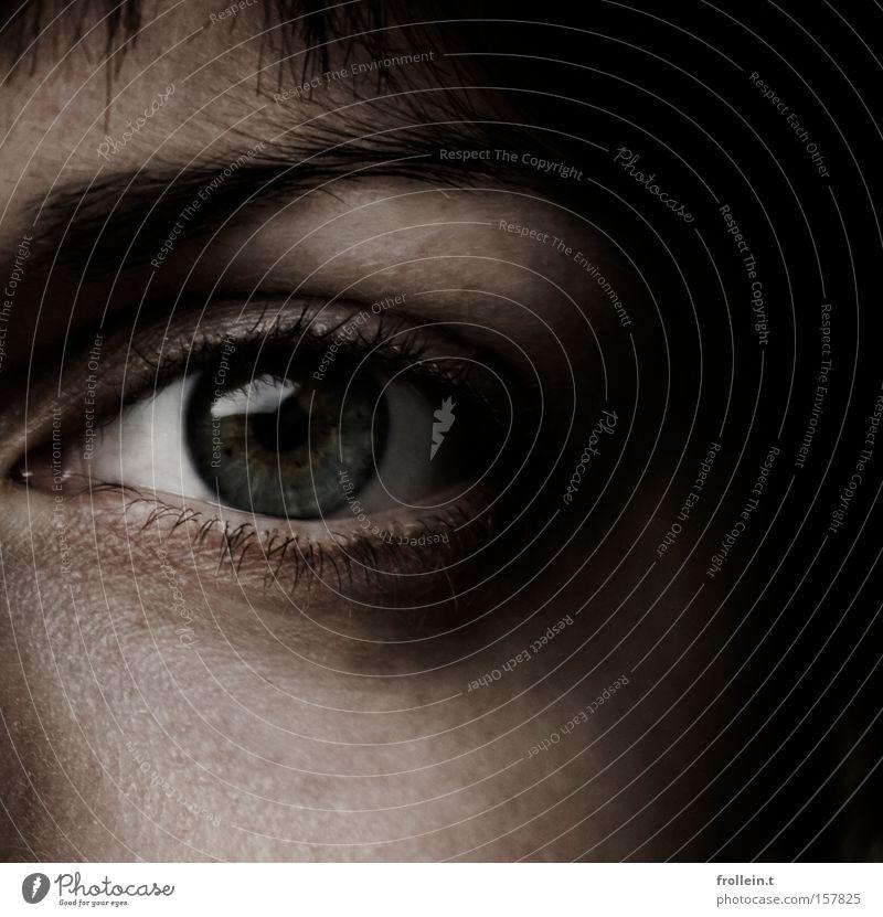 Black Face Eyes Dark Hair and hairstyles Fear Clarity Cheek