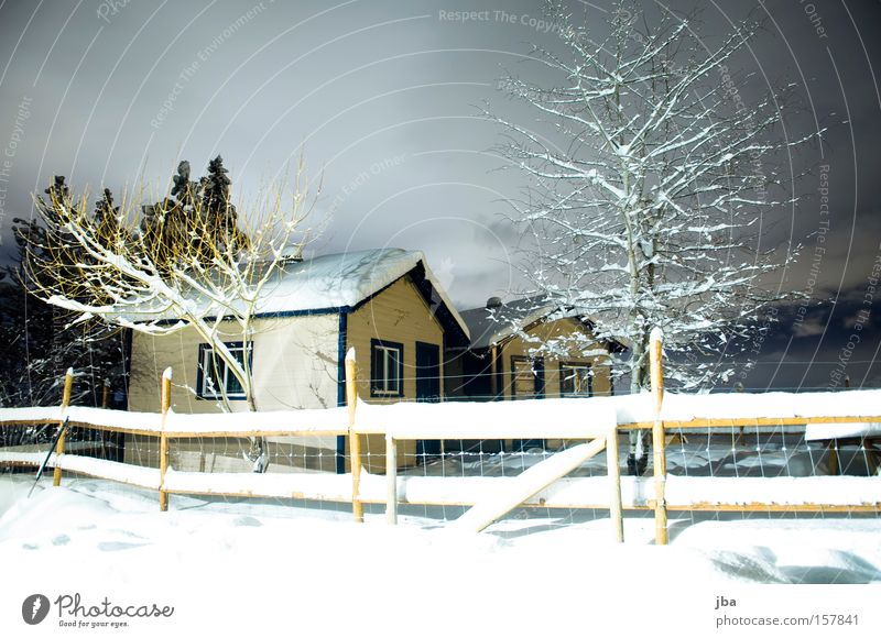 over there... House (Residential Structure) Hut Fence Tree Snow Winter Loneliness Calm Wood Virgin snow Clouds Bright Night Branch Long exposure Spooky