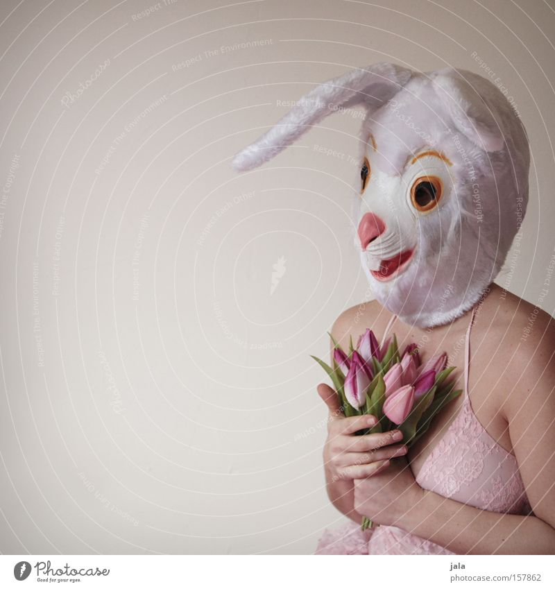 Woman White Flower Joy Love Animal Funny Easter Mask Carnival Hare & Rabbit & Bunny Costume Easter Bunny Dress up Human being