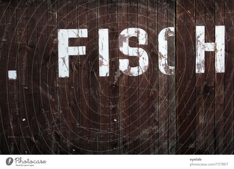 . FISH Wood Wall (building) Scratch mark Smear Wooden wall Hut Building Letters (alphabet) Typography Word Detail Characters Communicate syllable White Brown