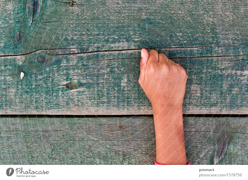 hand, numbers and wood Human being Girl Boy (child) Woman Adults Man Hand Fingers Tree Ring Old Brown Green Black White Success Love Pride Poverty Contentment