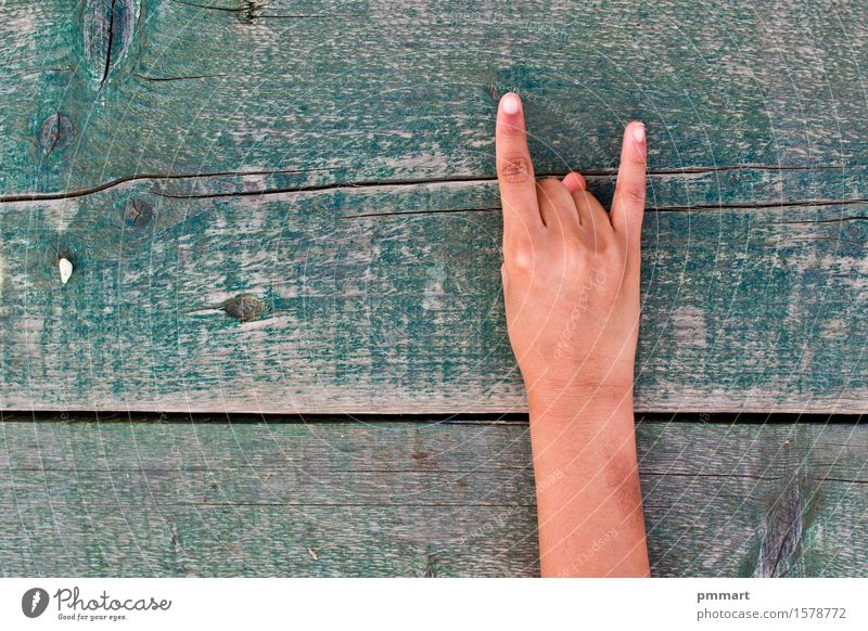 vulgar done with a hand sign Human being Woman Man Old Green White Tree Hand Girl Black Adults Boy (child) Wood School Brown Fingers