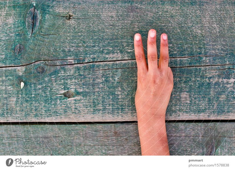 hand, numbers and wood Education School Business Human being Hand Fingers Wood Sign Old Brown Shopping Trade Curse index Middle Indicate Gesture