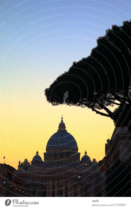 Chez Peter Vacation & Travel Sightseeing City trip Sky Sunrise Sunset Tree Stone pine Rome Vatican Italy Town Capital city Downtown Old town Church Dome Places