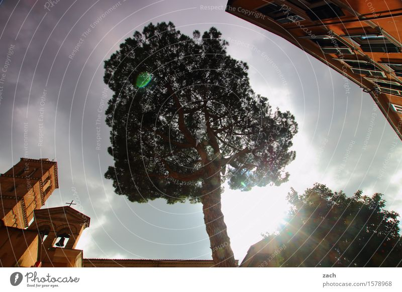 center Sky Clouds Storm clouds Sunlight Rain Plant Tree Stone pine Rome Italy Town Capital city Old town House (Residential Structure) Church Dome Castle Places