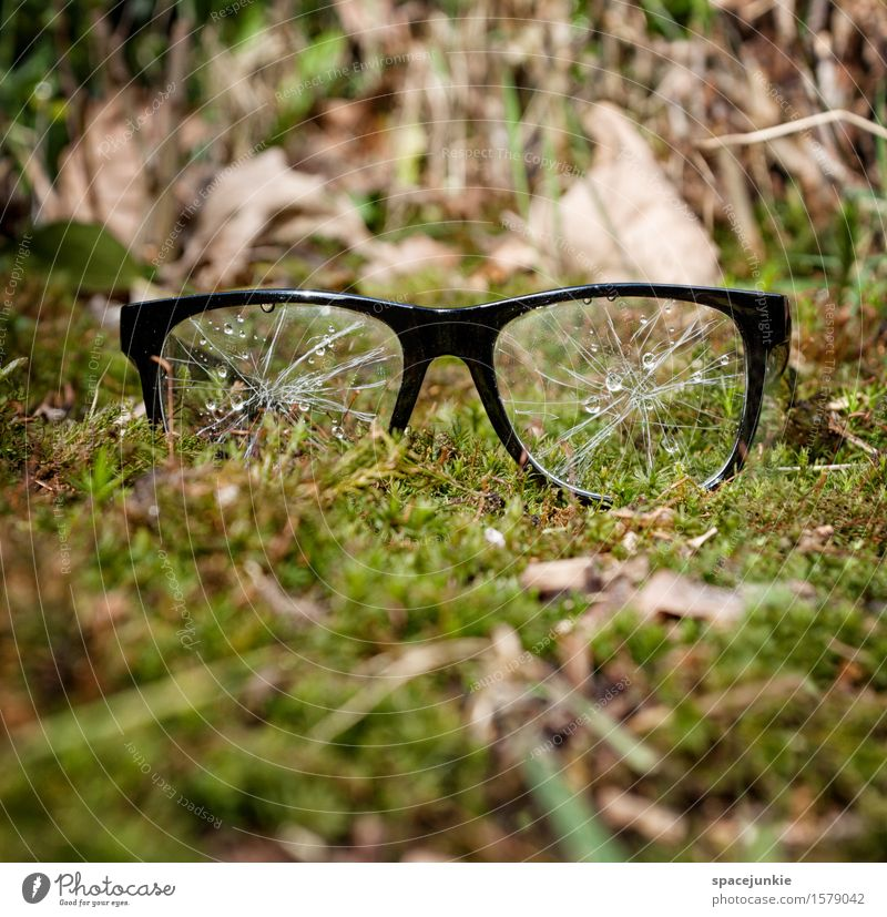 Nature Plant Green Landscape Environment Sadness Meadow Grass Exceptional Garden Park Bushes Broken Eyeglasses Grief Creepy