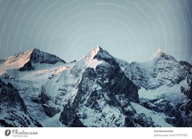 horned mountains | Rosenhorn, Mittelhorn, Wetterhorn Climbing Environment Landscape Sky Cloudless sky Sunrise Sunset Sunlight Winter Rock Alps Mountain Peak