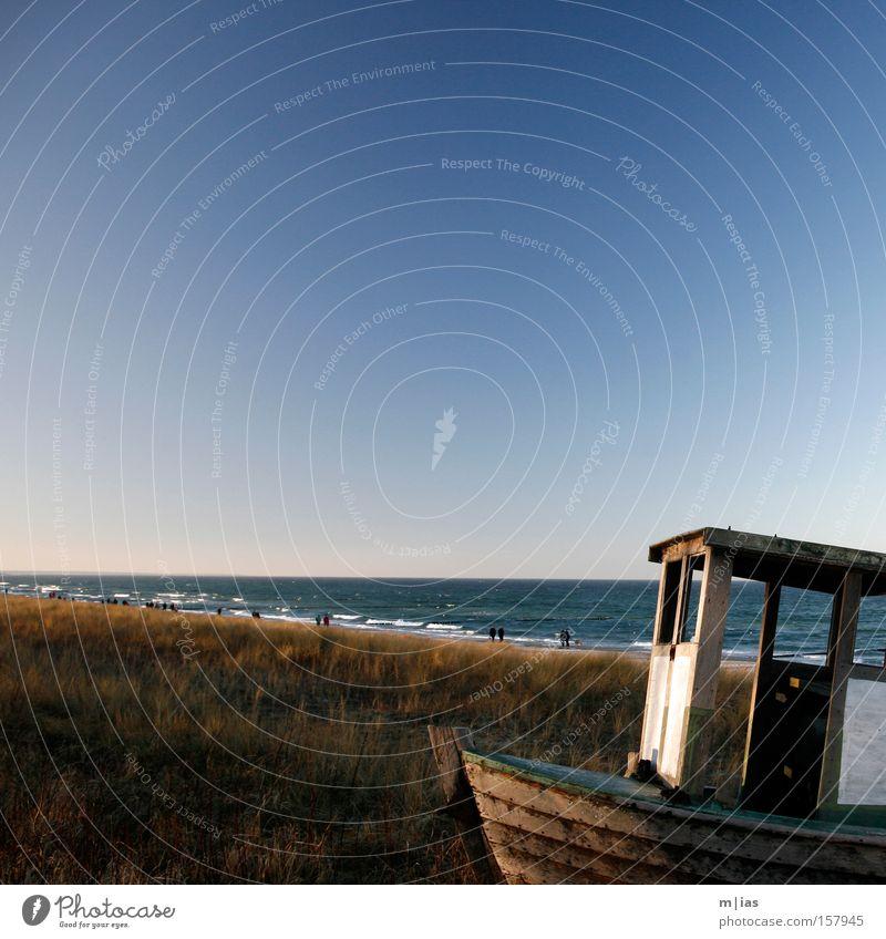 Water Ocean Summer Beach Vacation & Travel Relaxation Lake Watercraft Coast Romance Idyll Common Reed Dune