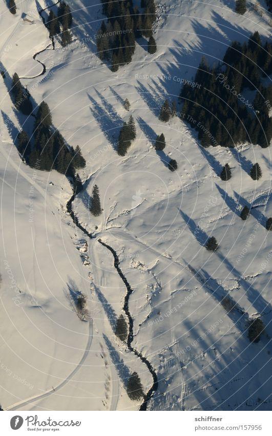 Tree Cold Snow Landscape Airplane Vantage point Fir tree Brook Black Forest Highlands