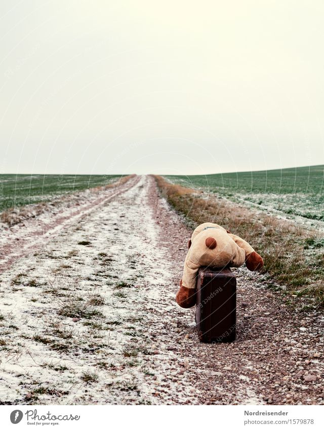 on the way Playing Vacation & Travel Spring Autumn Winter Climate Snow Grass Field Street Lanes & trails Suitcase Teddy bear Sign To fall Wait Emotions Sadness