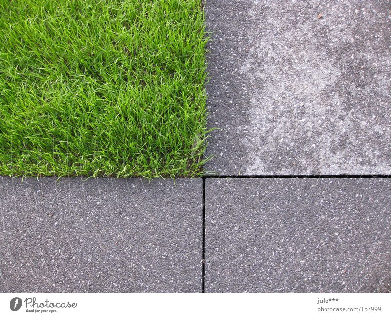 Green Grass Garden Gray Park Concrete Lawn Asphalt Transience Plant Rectangle