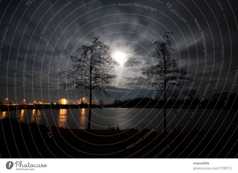 Moonlight over the lake Star (Symbol) Night Winter Cold Romance Bavaria Frozen Gravel plant Lake Lake Baggersee Ice Tree Dark Clouds Long exposure Beautiful