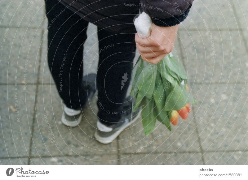 Hand Flower Girl Street Spring Lanes & trails Legs Feet Footwear Bouquet Tulip Sneakers Grateful