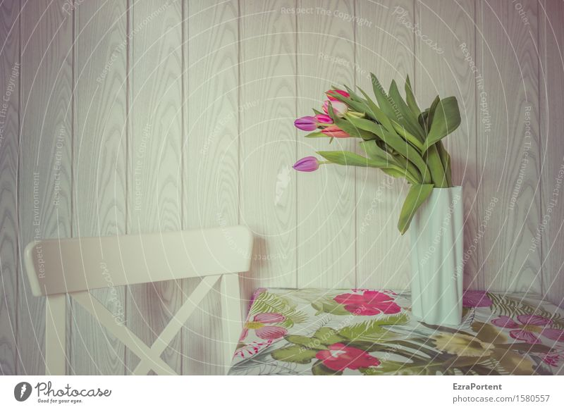 panelled and sculptured Spring Flower Tulip Blossom Blossoming Living or residing Bright Multicoloured White Bouquet Still Life Chair Table Tablecloth Vase