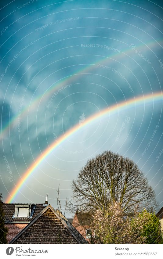 Somewhere under the rainbow 600. Nature Plant Sky Sunlight Spring Rain Tree Village House (Residential Structure) Roof Eaves Round Multicoloured Happy