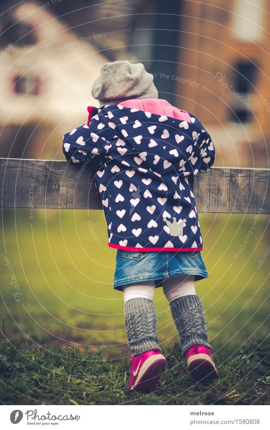 inquisitorial Toddler Girl Infancy 1 Human being 1 - 3 years Nature Spring Beautiful weather Grass Meadow Fashion Stockings casual jacket Sneakers Denim skirt