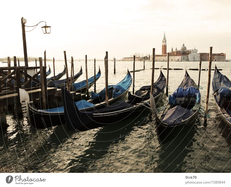 Gondola through Venice ... Lifestyle Sightseeing City trip Cruise Sunlight Spring Beautiful weather Waves Coast Bay Lagoon Islands Italy Veneto Old town Church