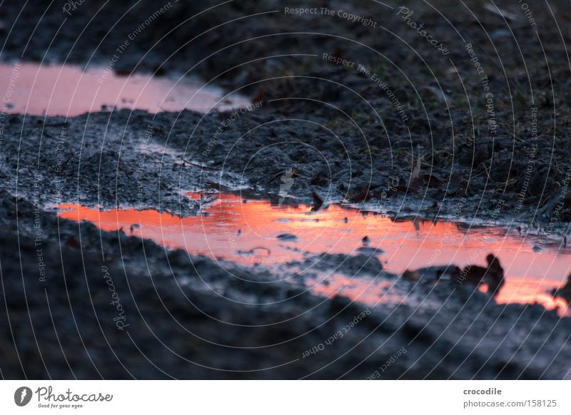 Water Beautiful Sky Red Orange Field Dirty River Footpath Brook Dusk Puddle Illusion