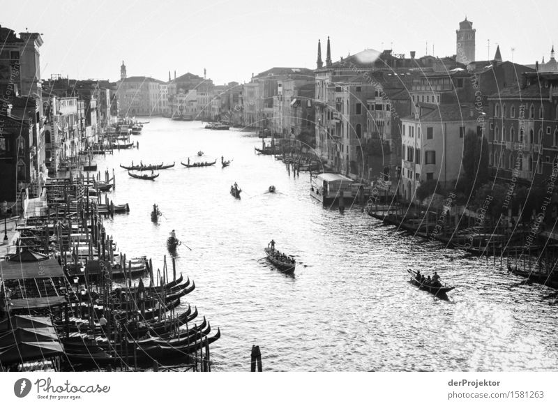 Canale Grande in black and white Vacation & Travel Tourism Trip Sightseeing City trip Summer vacation Waves Island Port City Tourist Attraction Landmark