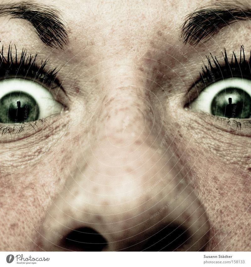 bus shelter Nose Eyes Green Wrinkles Freckles Nasal discharge Eyebrow Eyelash Apply make-up Ink Marriage proposal Anger Evil Nostril Cheek Mole Pimple Fear