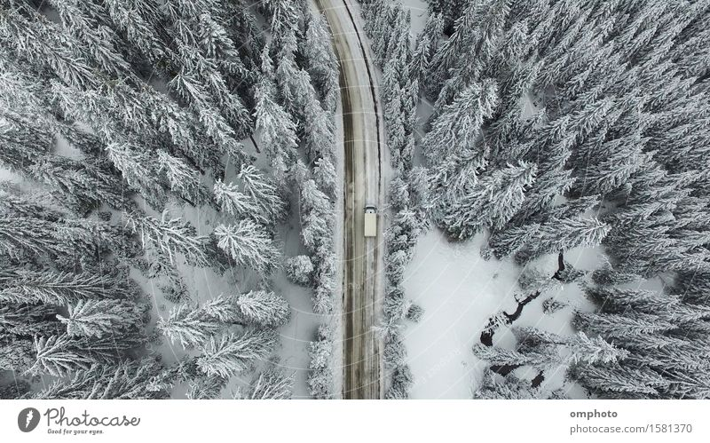 Aerial view of a snowy forest with high pines and road with a car in the winter Winter Snow Mountain Nature Landscape Tree Forest Street Car Aircraft Freeze