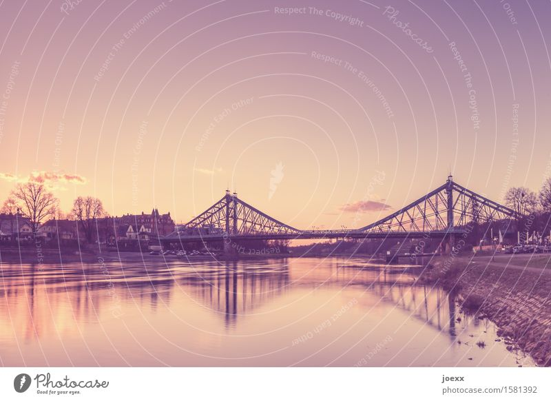 From Blasewitz and Loschwitz Sky Dresden Germany Bridge Historic Beautiful Brown Idyll Past Connection Blaues Wunder Colour photo Subdued colour Exterior shot