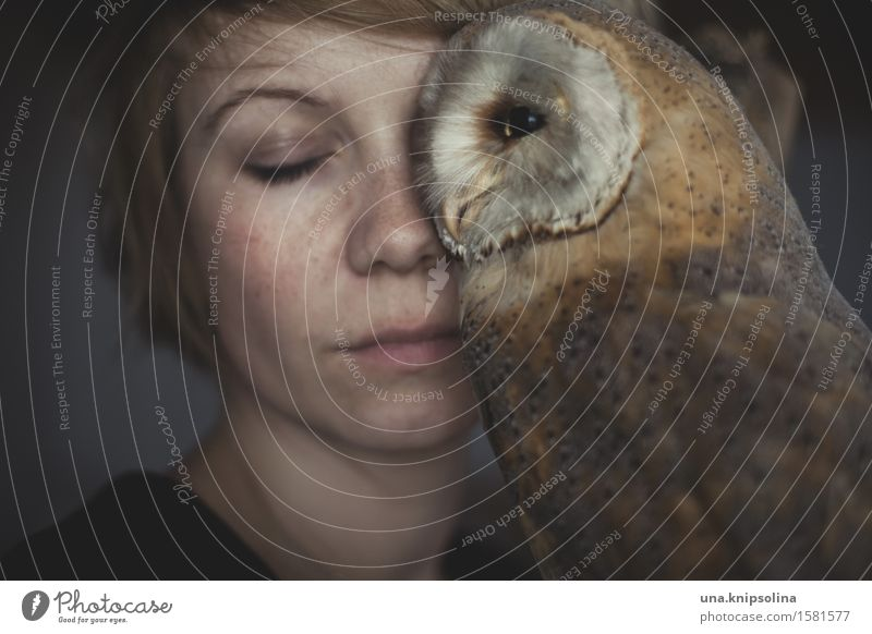 owl Woman Adults 1 Human being 18 - 30 years Youth (Young adults) Blonde Short-haired Wild animal Dead animal Owl birds Strix Animal Exceptional Soft Acceptance