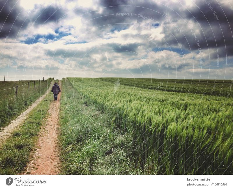 Human being Woman Sky Nature Man Blue Plant Green Landscape Loneliness Clouds Adults Environment Meadow Gray Freedom