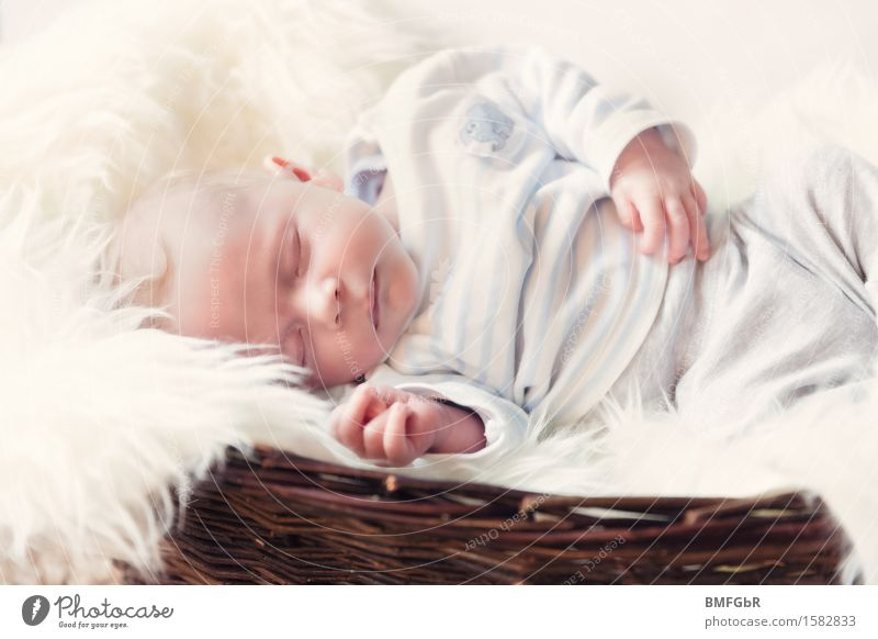 Cuddly little bed Human being Child Baby Boy (child) Infancy 1 0 - 12 months Lie Sleep Contentment Peaceful Dream Domestic happiness Family & Relations Pelt