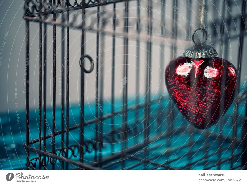 Blue Colour Beautiful Red Emotions Love Wood Metal Idyll Retro Sex Heart Romance Symbols and metaphors Longing Infatuation