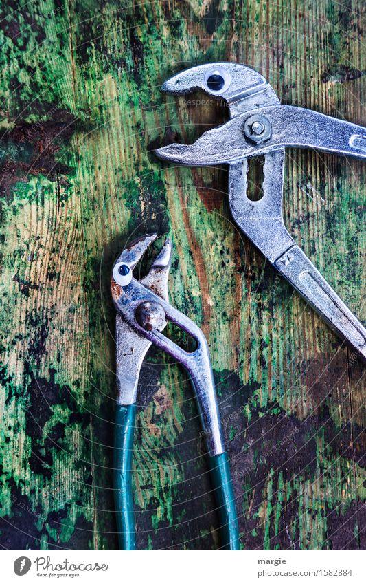 Listen carefully.... Profession Craftsperson Workplace Construction site Services Craft (trade) Tool Scissors Animal 2 To talk Scream Green Silver Mistrust