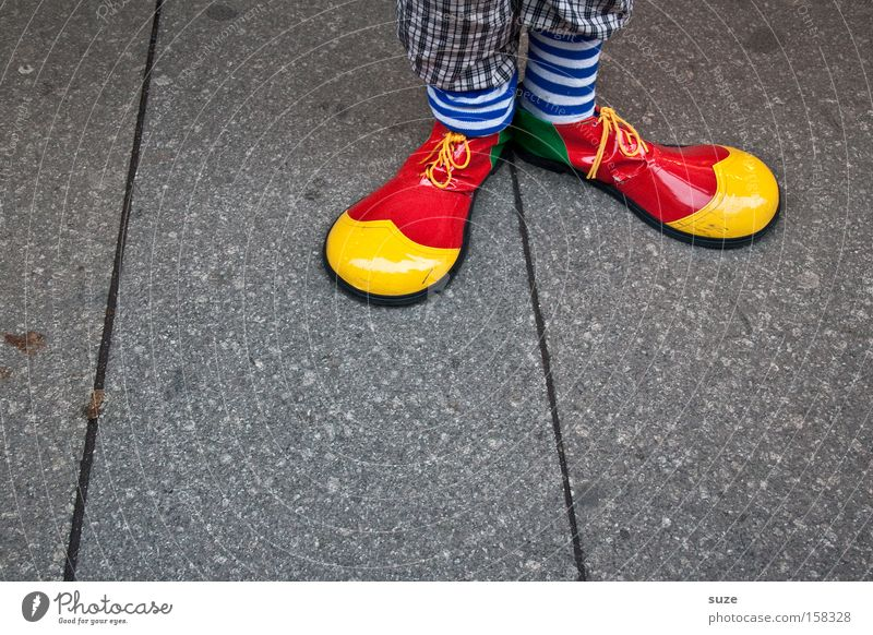 Clown Hoppla Joy Feasts & Celebrations Carnival Human being Feet 1 Stockings Footwear Funny Multicoloured Yellow Red Funster Striped socks Detail Costume