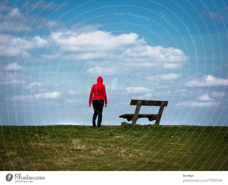Looking ahead Lifestyle Leisure and hobbies Feminine 1 Human being 30 - 45 years Adults 45 - 60 years Sky Horizon Meadow Hooded sweater Bench Park bench Stand