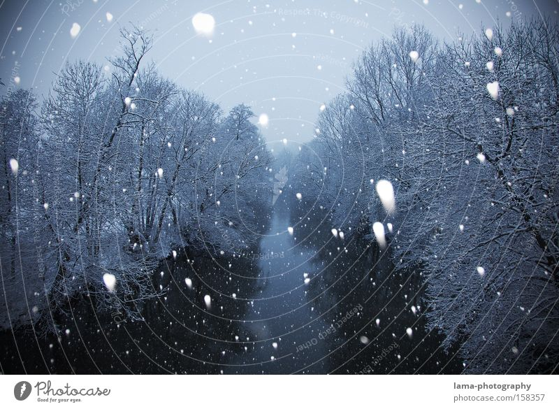 Winter wonderland Snow Snowfall Snowflake Snowscape River River bank Tree Ice Cold Solidify Landscape Brook