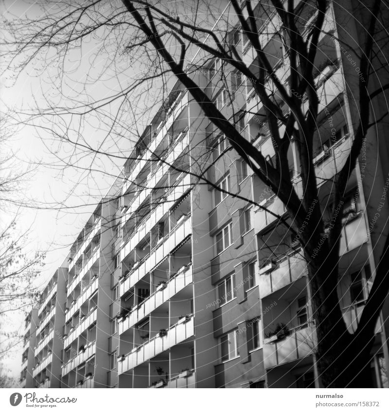 House (Residential Structure) Berlin High-rise Balcony Brandenburg GDR Prefab construction Ant Potsdam Consistent Prison cell Train compartment