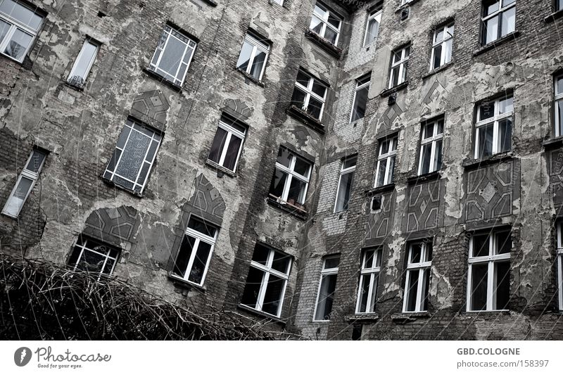 Old House (Residential Structure) Loneliness Berlin Window Gray Poverty Facade Grief Gloomy Derelict Decline Distress Redecorate Backyard Courtyard
