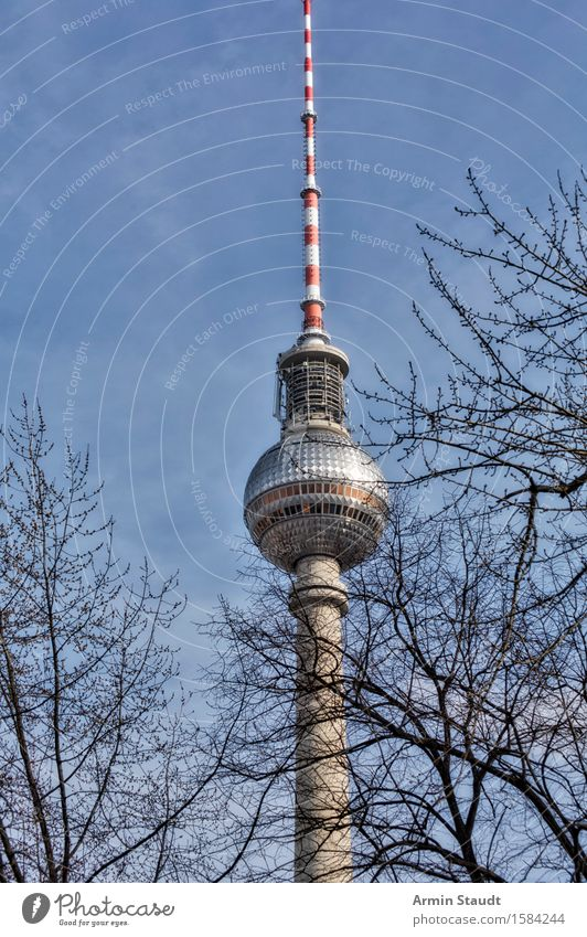 Sky City Blue Tree Far-off places Winter Architecture Autumn Berlin Glass Stand Telecommunications Retro Large Branch Concrete