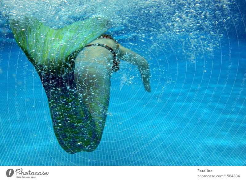swim off Human being Feminine Girl Young woman Youth (Young adults) Infancy 1 Elements Water Summer Free Near Wet Blue Green Mermaid Dive Swimming & Bathing