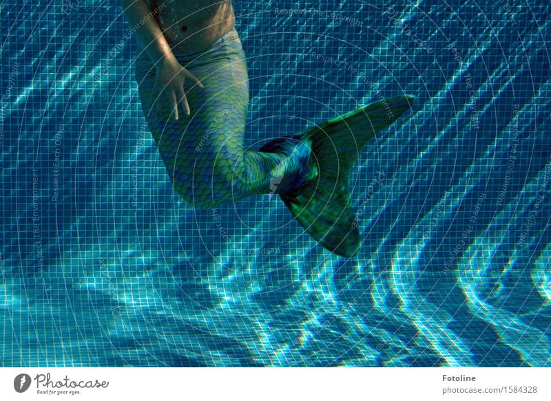 Dance under water Human being Feminine Girl Infancy Arm Hand Fingers Elements Water Summer Wet Blue Green Mermaid Mythical creature Water wings