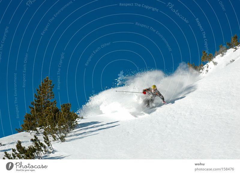 Snow Mountain Snowfall Speed Skiing Austria Extreme Blue sky Winter sports Deep snow Avalanche Free skiing