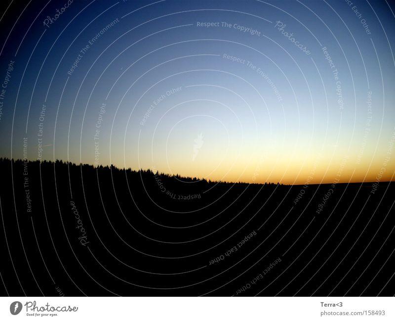 Sky Sun Blue Red Black Forest Weather Sunrise Morning Sunset Dawn Dusk Evening sun