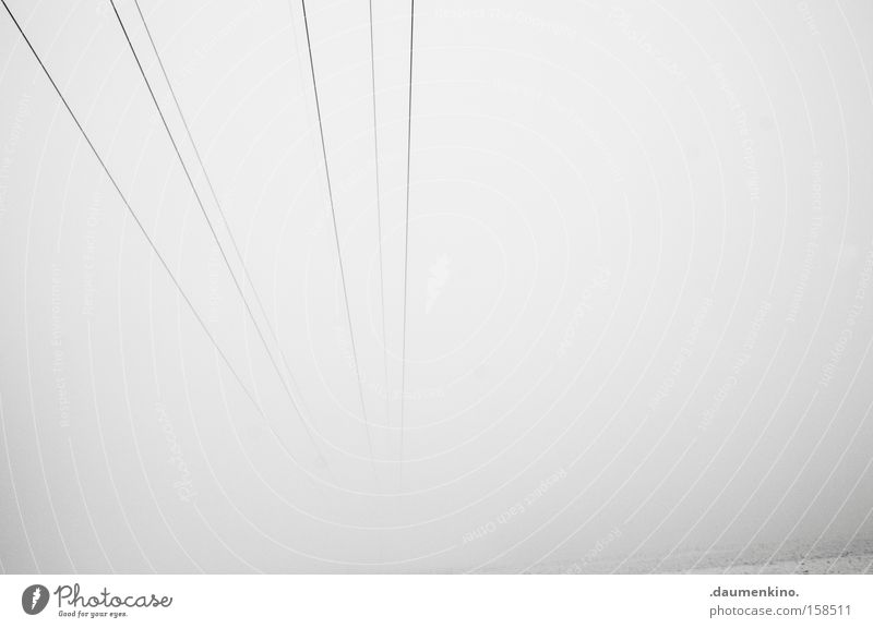 guitar strings Musical instrument string Fog Electricity Transmission lines Landscape Infinity Black & white photo Obscure Going