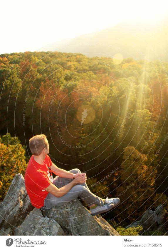 Sun Summer Forest Relaxation Autumn Mountain Rock Sit USA T-shirt Canada Americas To enjoy Virginia Richmond Charlottesville