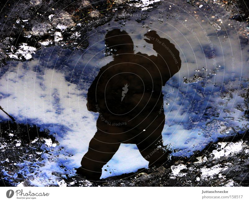 Who came from the cold Winter Ice Cold Freeze Puddle Reflection Silhouette Sky Frozen Shadow Applause Wave Blue Success Juttas snail